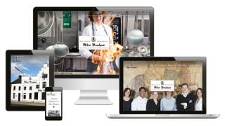 preview web responsive